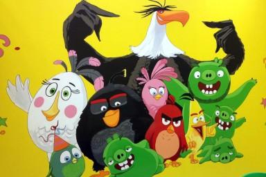 Детский День рождения с Angry Birds